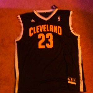 LeBron James Cleveland Cavaliers Addias NBA Jersey